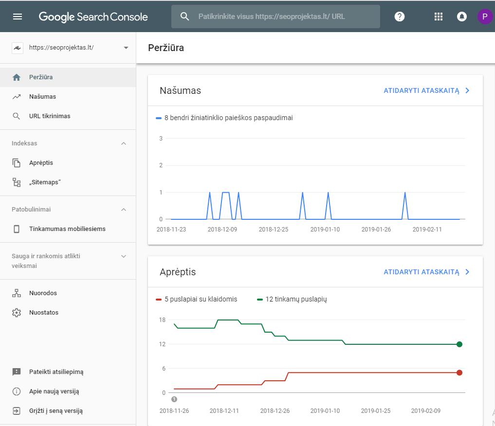 Google Webmasters pagrindinio puslapio pavyzdys