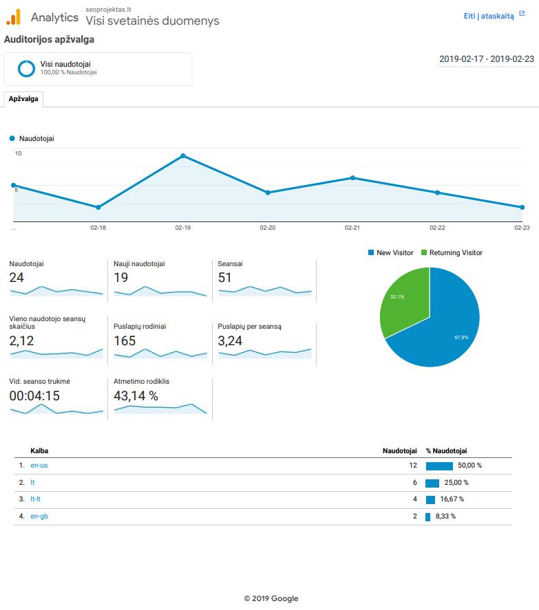 Google Analytics ataskaitos pavyzdys